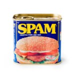 347x346xcan-of-spam.jpg.pagespeed.ic.Pftgua27tb